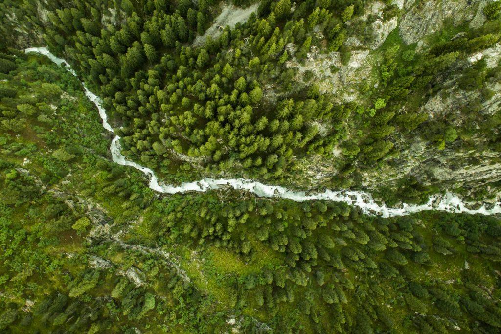 topdown_drone_river