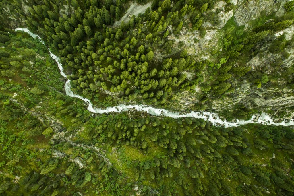 topdown_drone_river